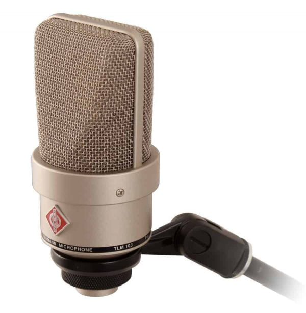 Neumann TLM 103 Large Diaphragm Cardioid Studio Microphone on Stand