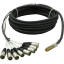 Little Fish Audio 6ft 8-Channel XLRM-DBSUB Snake